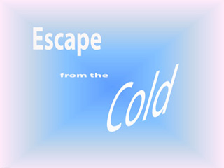 Film Escape the Cold